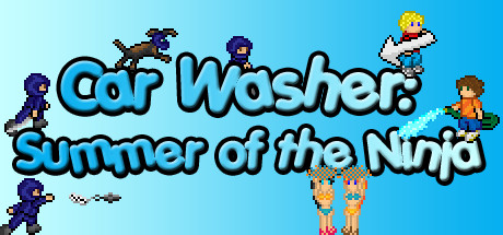 Car Washer: Summer of the Ninja